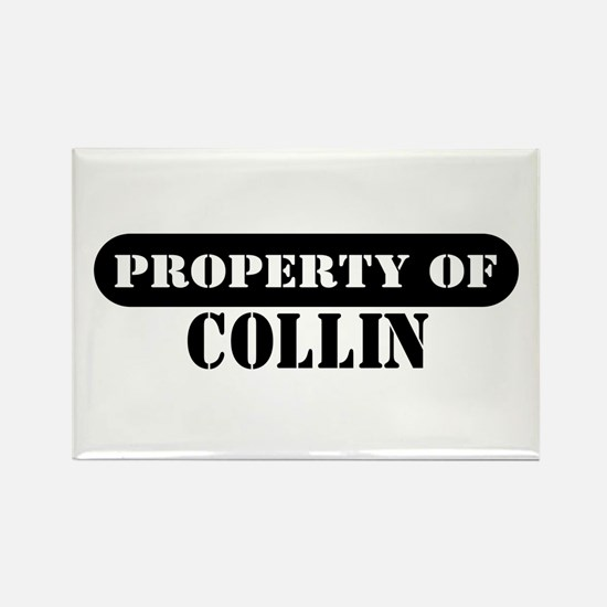 Property of Collin Rectangle Magnet