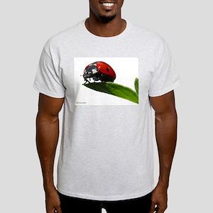 The LadyBug Ash Grey T-Shirt