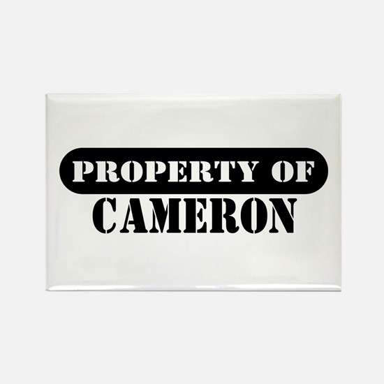 Property of Cameron Rectangle Magnet