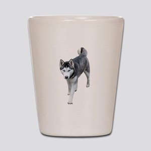 Husky Shot Glass