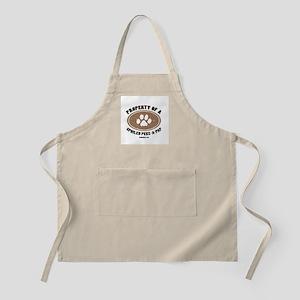 Peke-A-Pap dog BBQ Apron