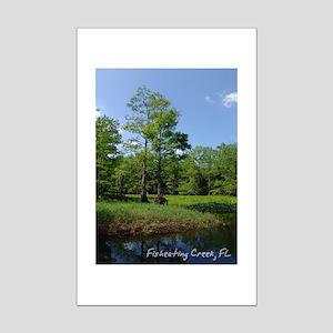 Fisheating Creek -Views Mini Poster Print