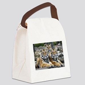 TIGERS Canvas Lunch Bag