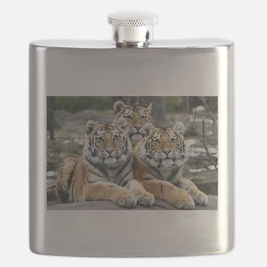 TIGERS Flask