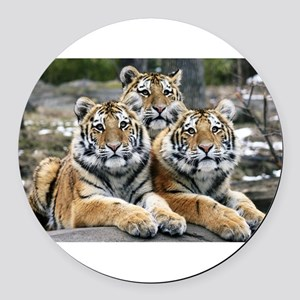 TIGERS Round Car Magnet