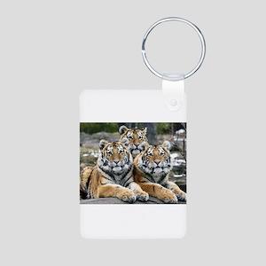 TIGERS Aluminum Photo Keychain