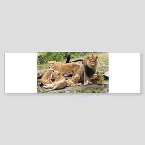 LION FAMILY Sticker (Bumper)