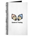 Gemini in Training (Journal)