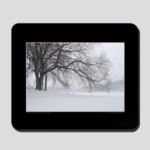 Winter Branches Mousepad