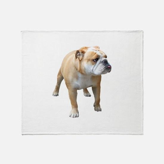 Cute English bull dog Throw Blanket