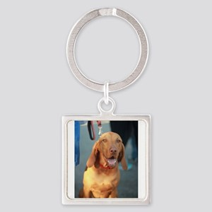 Viszla brown happy sitting and smiling Keychains