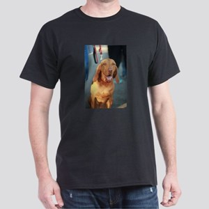 Viszla brown happy sitting and smiling T-Shirt