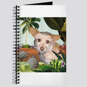 Terrier Chihuahua Mix Journal
