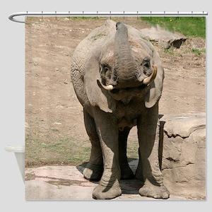 Elephant001 Shower Curtain