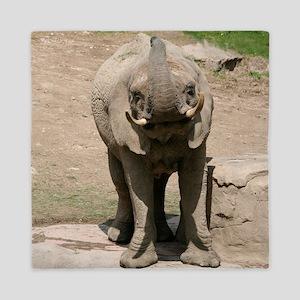 Elephant001 Queen Duvet