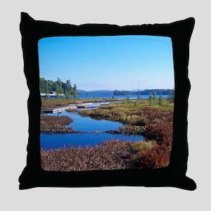 mountain river scene Throw Pillow