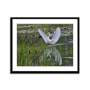 Great Egret Framed Panel Print