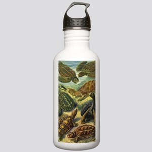 Vintage Turtles and To Stainless Water Bottle 1.0L