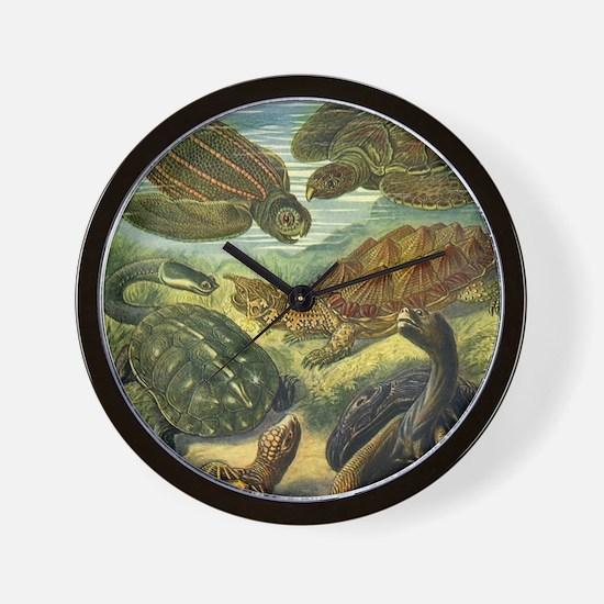 Vintage Sea Turtles and Tortoises Wall Clock