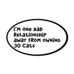 Cat Lady: One Bad Relationship Away Oval Car Magne