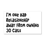 Cat Lady: One Bad Relationship Away Car Magnet 20