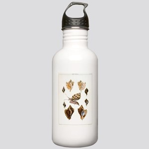 Vintage Seashells and  Stainless Water Bottle 1.0L