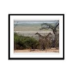 African Giraffe Framed Panel Print