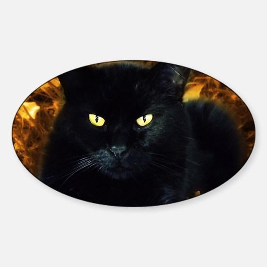 Halloween Cat Sticker (Oval)