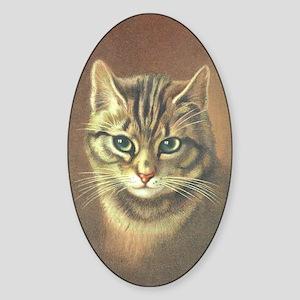 Brown Kitty Oval Sticker