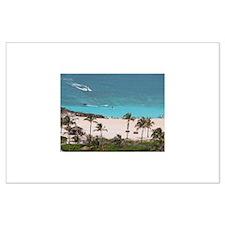 Paradise Island Beach Palms - Lg Poster