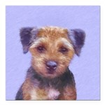Border Terrier Square Car Magnet 3
