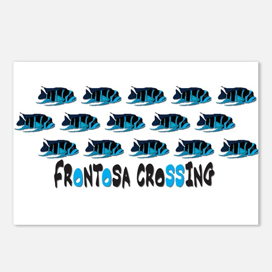 Frontosa Crossing Postcards (Package of 8)