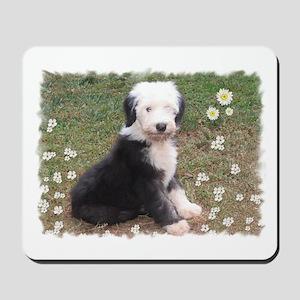 Old English Sheepdog puppy Mousepad