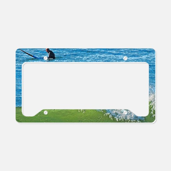 Wipeout License Plate Holder