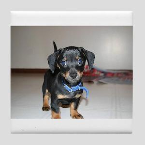 """""""Adorable Puppies"""" Tile Coaster"""