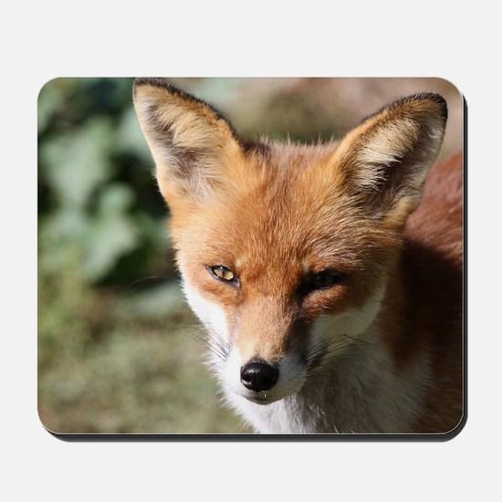 Fox001 Mousepad