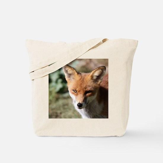Fox001 Tote Bag