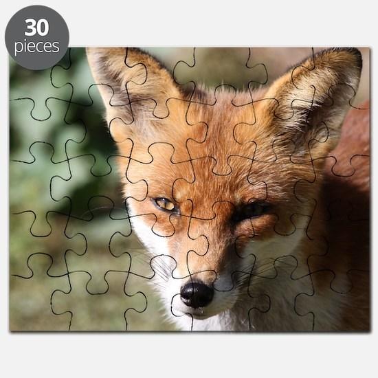 Fox001 Puzzle