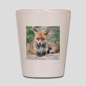 Fox002 Shot Glass