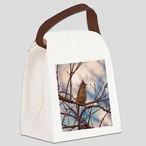 Tufted Titmouse bird Canvas Lunch Bag