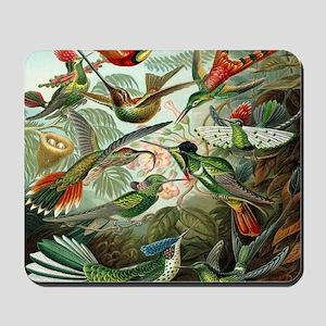 Vintage Hummingbirds Mousepad