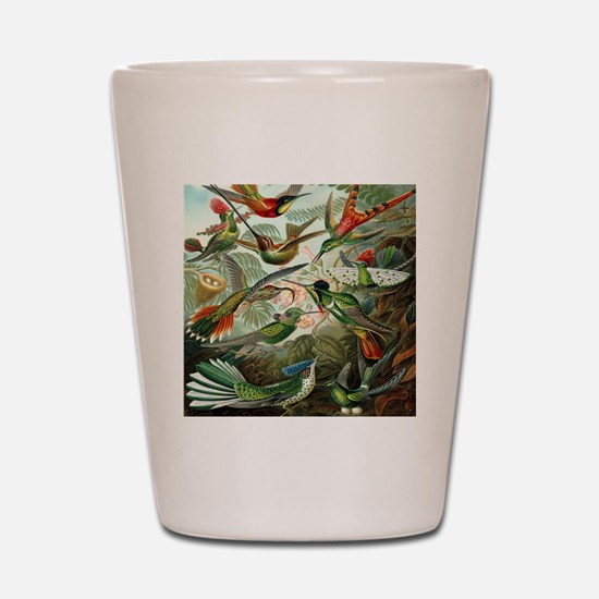 Vintage Hummingbirds Shot Glass