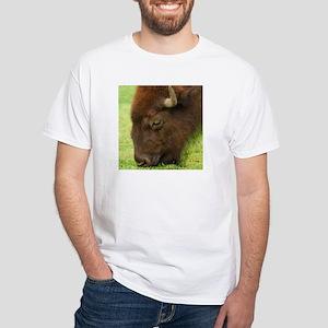 Bison Grazing White T-Shirt