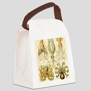 Vintage Octopus, Octopi Canvas Lunch Bag
