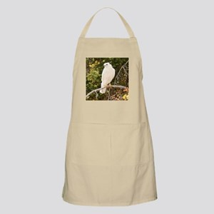White red tail hawk Apron