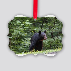 Smoky Mountain Black Bear Picture Ornament