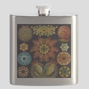 Vintage Marine Life Flask
