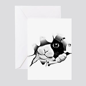 Kitten Peeking Out Of Hole Greeting Cards (Pk of 1