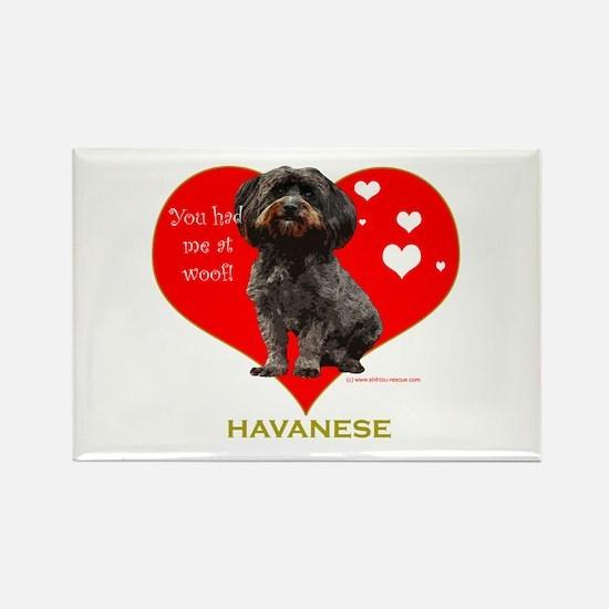 Havanese Valentine Woof Ebony Rectangle Magnet