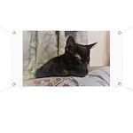 Sleepy Kitty Banner